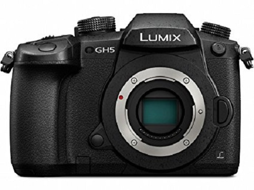 Panasonic Lumix DMC-GH5 Black
